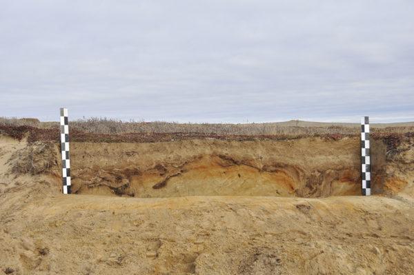 Археологические разведки в тундре Ненецкого АО, 2013