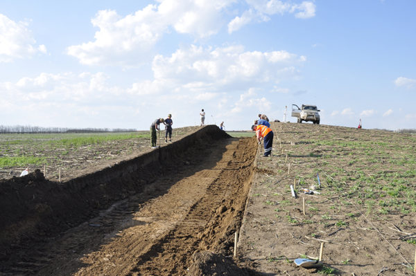 Археологические раскопки кургана 1 могильника Камышевахский 9 в Ростовской области, 2015